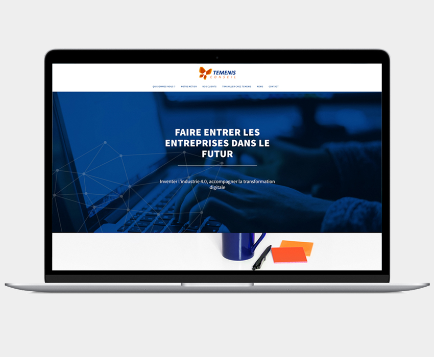 TEMENIS - Homepage su site Internet